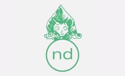 Nachtdigital logo Mint 2019